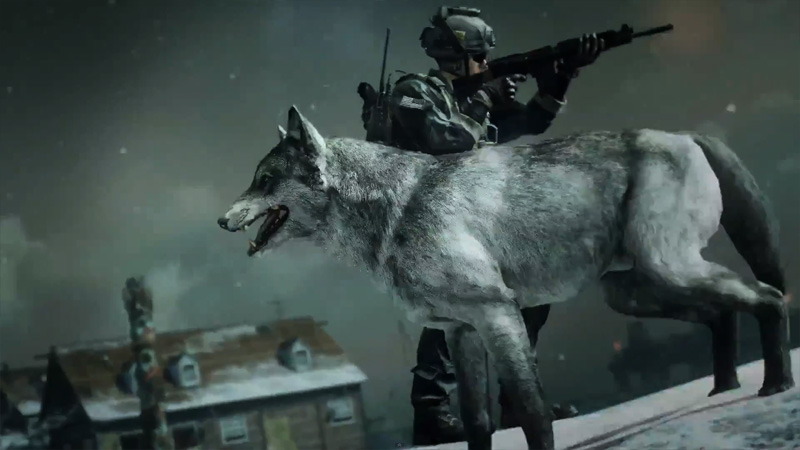 wolf dog killstreak